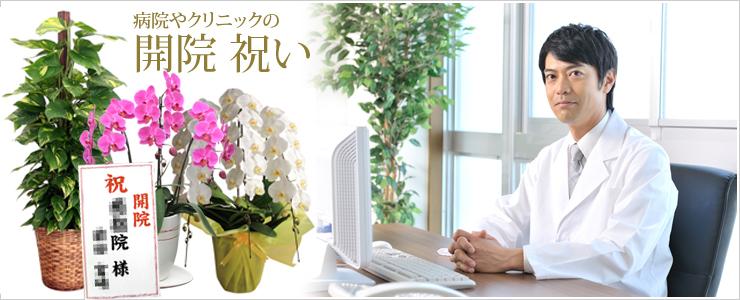 病院やクリニックの開院祝いのお花