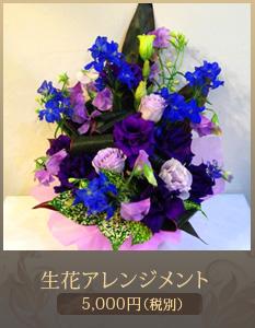 出演祝い花(舞台公演 コンサート)アレンジメント5,000円