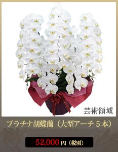 """移転祝いこちょうらん45,800円"""""""