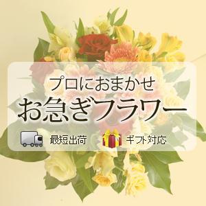 お誕生日のお祝いに贈るお花